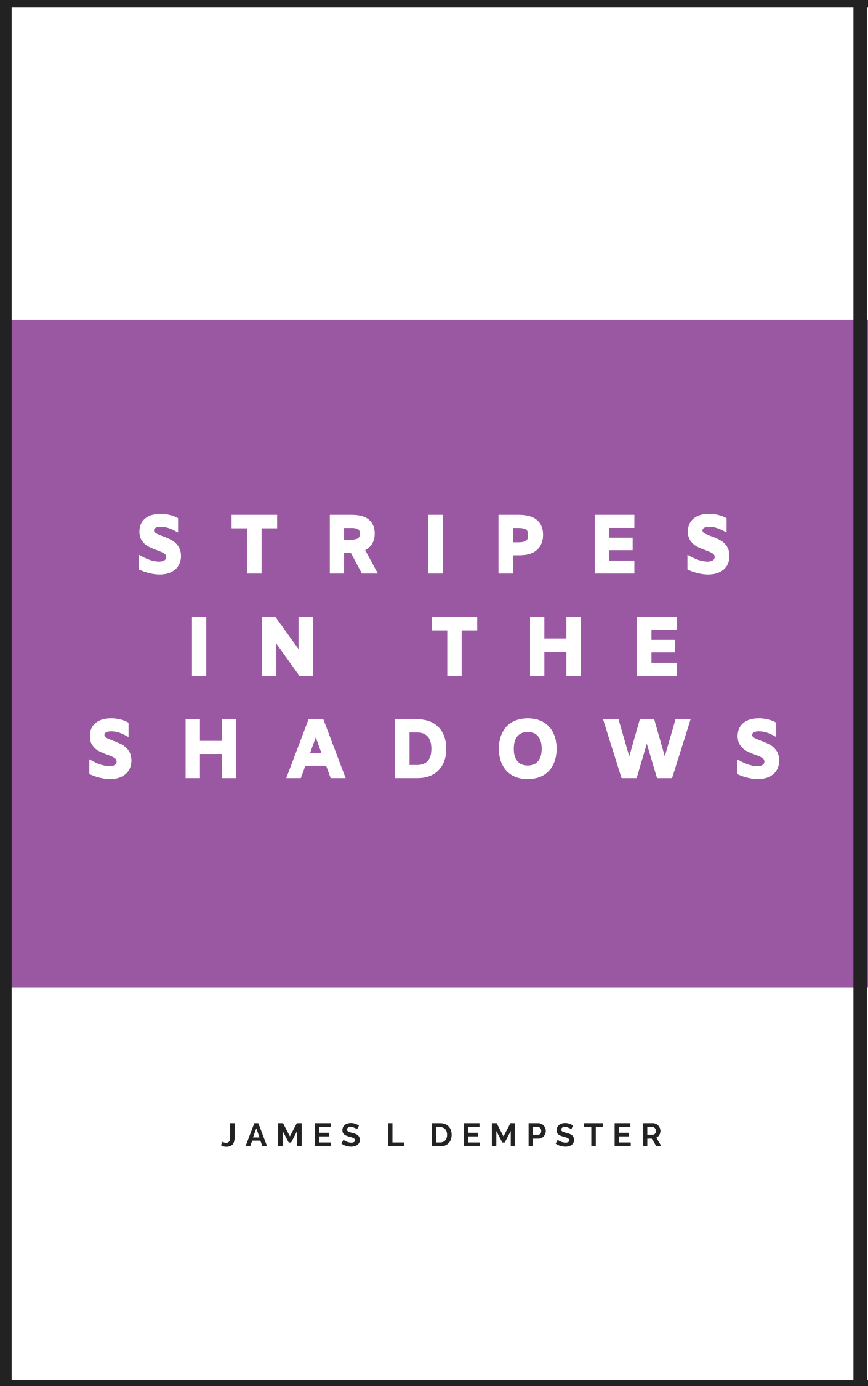 James L Dempster Stripes in the Shadows